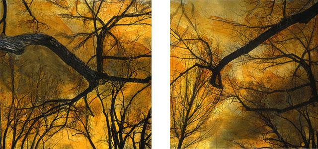 Cottonwoods I and II