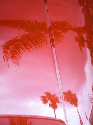 cherry apple palms