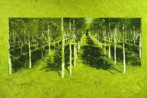 poplar grove 12